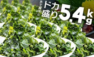 ドカ盛り5.4キロ(水で戻すと)!長崎産 乾燥カットわかめ
