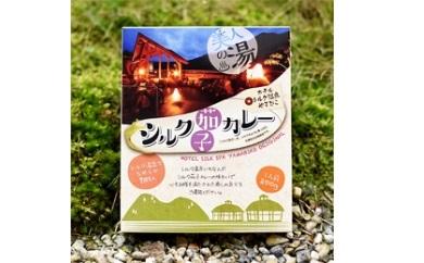 シルク茄子カレー【200g×2個】