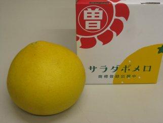【ポイント交換】三豊市オリジナル文旦「サラダポメロ」超特大