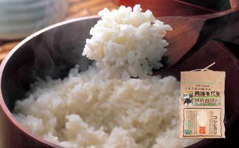 美浦そだち(コシヒカリ) 精米5kg