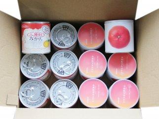香川県産 小原紅みかん缶詰&瀬戸芸モデル缶詰 各6缶セット