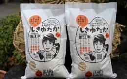 【29年産】すっごいもちもち「しきゆたか」玄米10kg(5kg×2)【C003-C】
