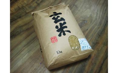 着日指定可光市のお米(玄米)10kg