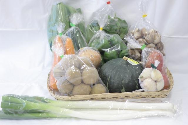 R008世界遺産【白神山地】の自然で採れた旬の野菜!!【8,000pt】