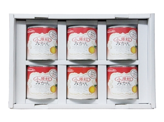 【6缶BOXセット】香川県産「小原紅みかん」缶詰ギフト