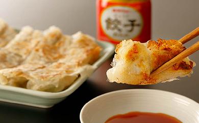 <本土最南端>佐多の田中肉屋ニンニクたっぷりやみつき餃子(タレ付)