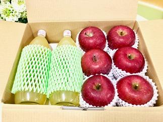 【2019年度先行受付】サンフジ100%りんごジュースとサンふじりんごセット