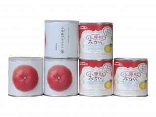 【6缶セット】香川県産 小原紅みかん缶詰&瀬戸芸モデル缶詰ギフト