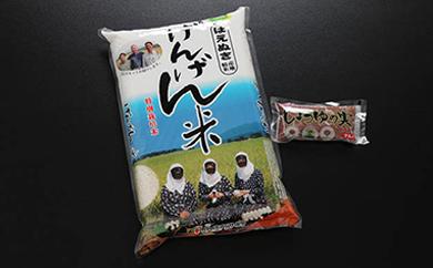 平成29年産米平田げんげん米(はえぬき)5kg