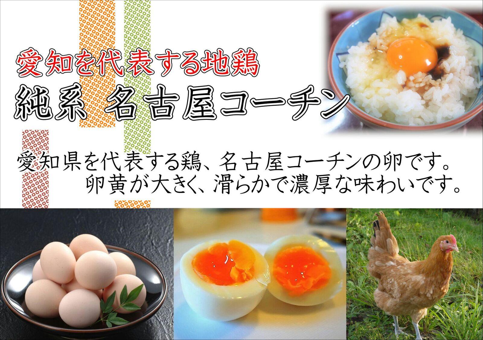 日本三大地鶏!! 本当に美味しい食べ物は調味料の味に負けません!「純系 名古屋コーチンの卵」