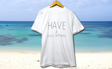 Haveaniceamami半袖Tシャツ(ホワイト)