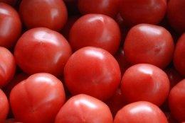 糸島産 絶品トマト(4kg入り)