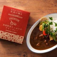美浦野菜たっぷりのチキンカレー辛口