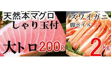 寿司♪カニ♪天然本マグロ大トロ200g(しゃり玉付)&ズワイガニ2kg
