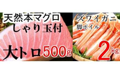 寿司♪カニ♪天然本マグロ大トロ500g(しゃり玉付)&ズワイガニ2kg