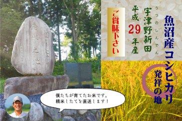 【29年産!】魚沼産コシヒカリ発祥の地米 5㎏