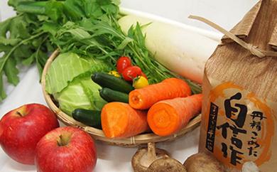 ほっとおつかい便Mottekuがお届けする酒田のお米3種食べ比べと季節の野菜セット