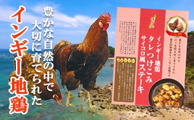 インギー地鶏 タレつけこみ さいころ風ステーキ