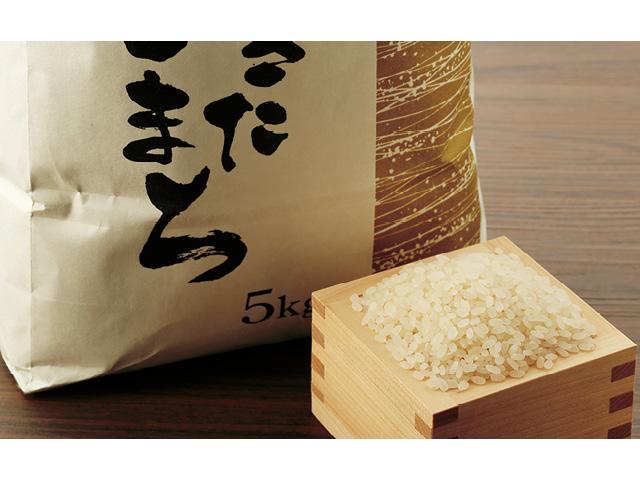 秋田市雄和産あきたこまち清流米5kg(平成30年度新米)