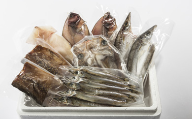 【能登西海漁港で水揚げされた地魚を加工】能登の地魚一夜干し