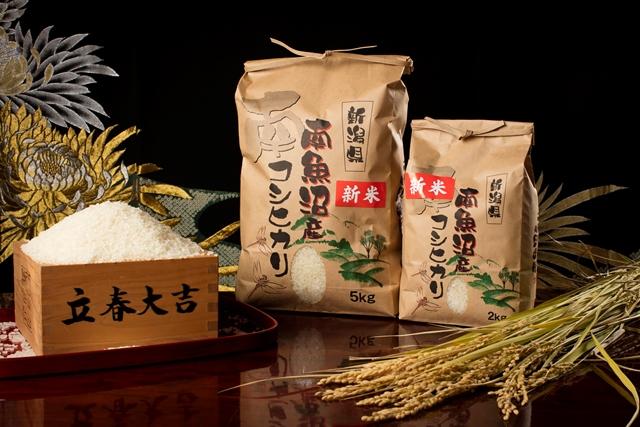 【最高級】南魚沼産こしひかり5kg×2袋(無洗米)