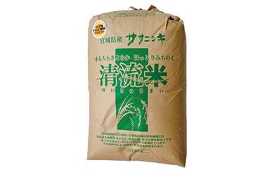 RM729-C【29年度産】天日干しササニシキ玄米30kg小分けなし【55000pt】