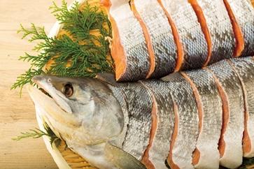 【数量限定】オホーツク産【極上】天然銀鮭の新巻き(中)