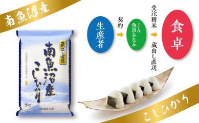 【29年産】JA魚沼みなみ不動の人気No.1南魚沼産こしひかり5kg