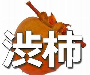 【全国1位の柿の産地からの贈り物】干柿用生渋柿7kg