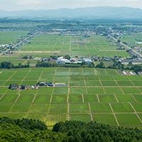 北海道東川町のふるさと納税お礼の品1