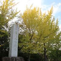 愛知県長久手市のふるさと納税お礼の品3