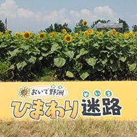 滋賀県野洲市のふるさと納税お礼の品1