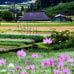 鳥取県日野町のお礼の品2