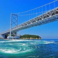 徳島県徳島県のふるさと納税お礼の品1