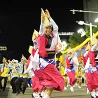 徳島県徳島県のふるさと納税お礼の品2