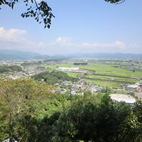 高知県南国市のふるさと納税お礼の品1
