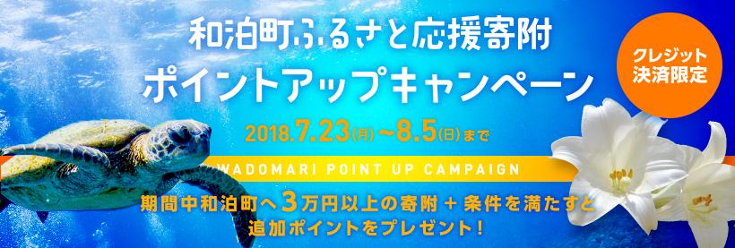 https://furu-po.com/s3img/lg/465330/wadomari_camp_bnr.jpg