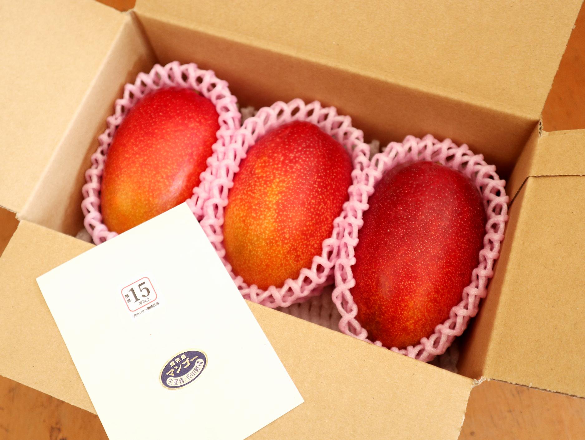 糖度15度以上のこだわり極上マンゴーを是非ご賞味下さい