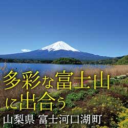 多彩な富士山に出合う  富士河口湖町