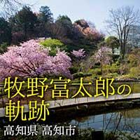 牧野富太郎の軌跡  高知市