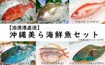 【泊漁港直送】沖縄美ら海鮮魚セット
