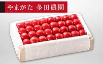 【特選ダイアナブライト】桐箱詰約700g【やまのべ多田耕太郎のさくらんぼ多田農園】