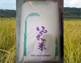 金沢いやさか米コシヒカリ(精米)30kg