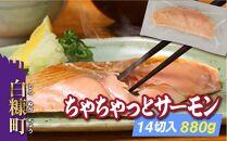 ちゃちゃっとサーモン【14切入(880g)】