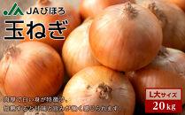 北海道JAびほろ 玉ねぎ L大サイズ・20kg