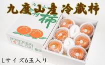 【先行予約】【まごころ栽培】九度山の冷蔵富有柿Lサイズ6玉入り