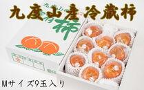 【先行予約】【まごころ栽培】九度山の冷蔵富有柿Mサイズ9玉入り