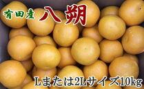 【先行予約】【手選果】有田産の八朔10kg(Lまたは2Lサイズいずれかお届け)