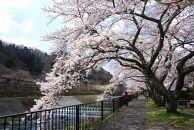箱根町るるぶトラベルプランに使えるふるさと納税宿泊クーポン57,000円分