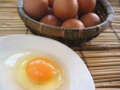 ☆放し飼い自然卵「歩荷」40個入箱